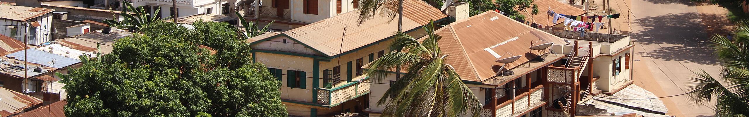 CTI Banner Gambia 2560 400