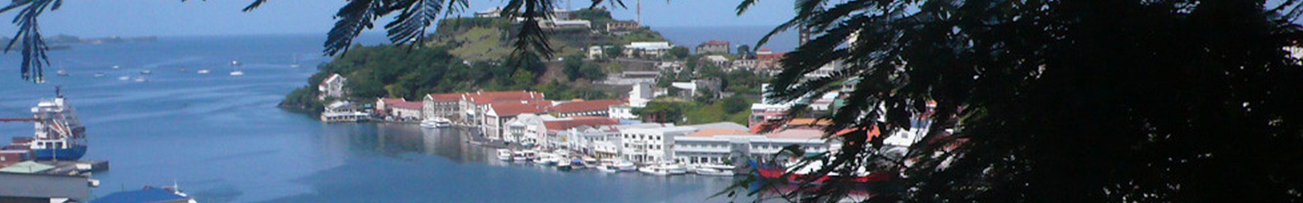 CTI Banner Grenada 2560 400