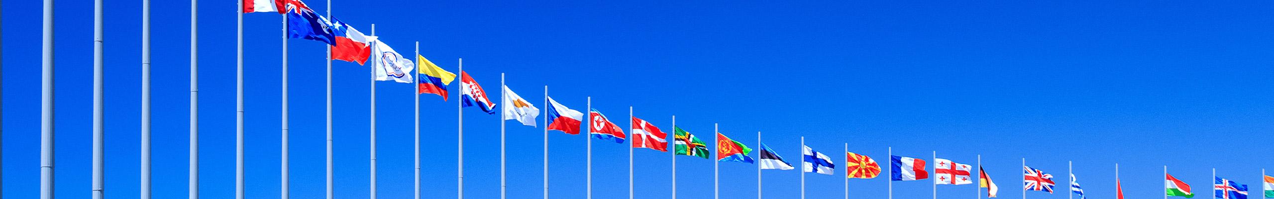 CTI Banner Flags 2560 400